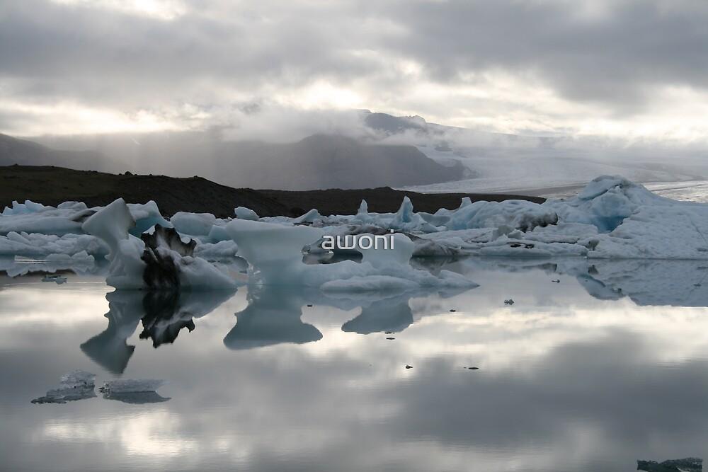 Ice Reflections by awoni