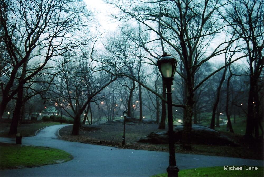 Central Park by Michael Lane