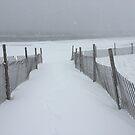 Snow Beach by Jacker