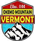SKI OKEMO MOUNTAIN VERMONT SKIING SNOWBOARDING HIKING CLIMBING 5 by MyHandmadeSigns