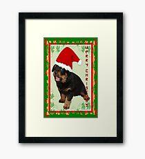 Cute Merry Christmas Puppy In Santa Hat Framed Print