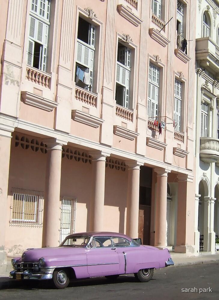 Havana pink by sarah park