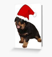 Cute Merry Christmas Puppy In Santa Hat Greeting Card
