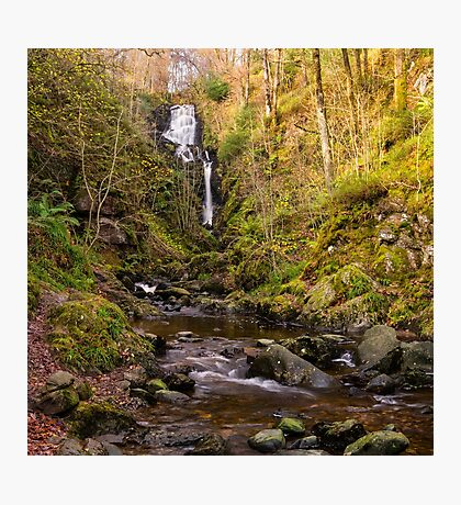 Little Fawn Waterfall Photographic Print