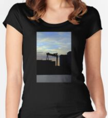 Harland & Wolff Silhouette Women's Fitted Scoop T-Shirt