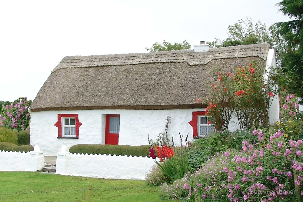 irish cottage by Sean Farragher