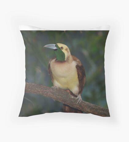 Raggiana Paradise bird  Throw Pillow