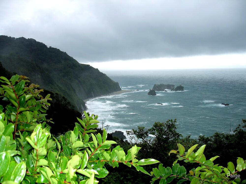 South Island Coast by Paige