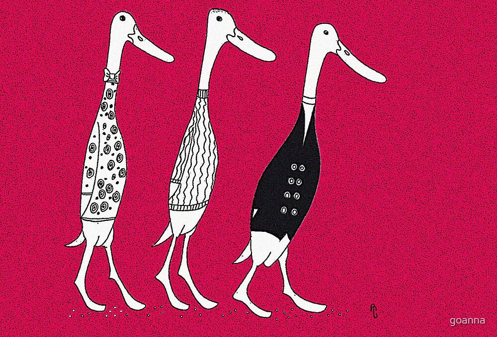 Dressed ducks by goanna