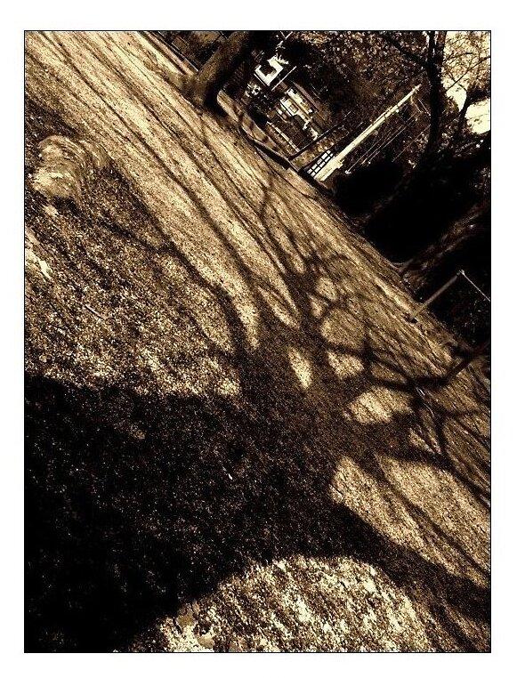 Shadow by ndru