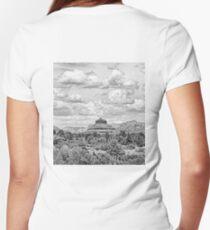 Sedona Study 6  Women's Fitted V-Neck T-Shirt