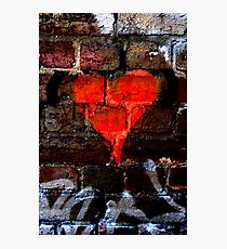 Bleeding Heart Photographic Print