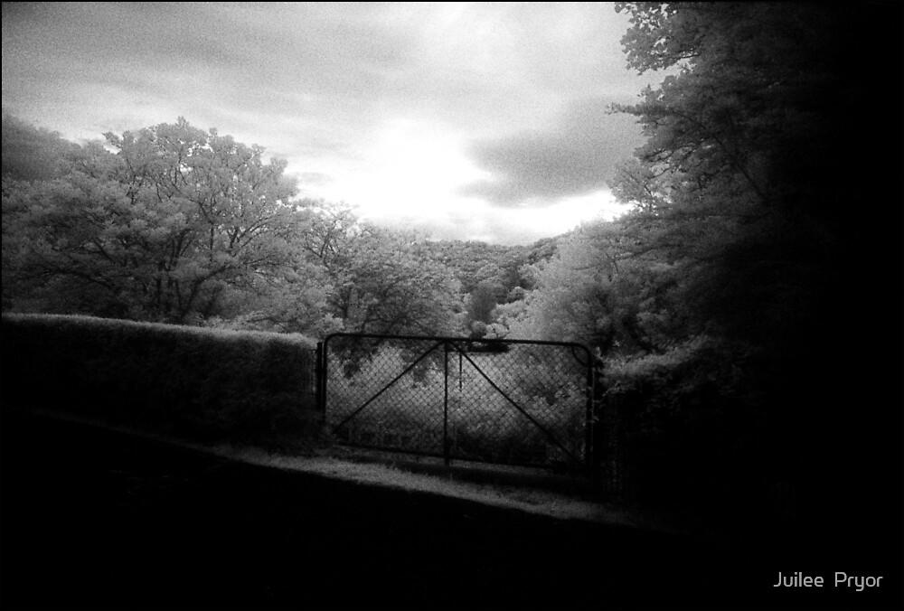 gate by Juilee  Pryor