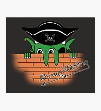 Pirates in the Caribbean Photographic Print