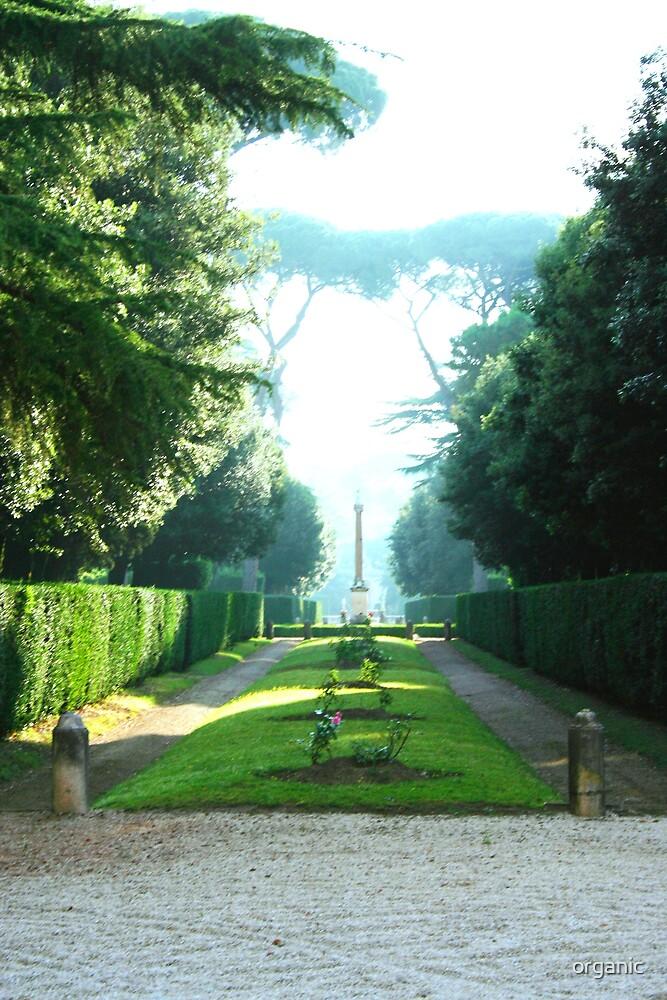 Foggy Garden/Rome, Italy by organic
