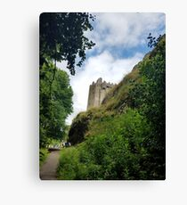 Blarney Castle and Caves Canvas Print