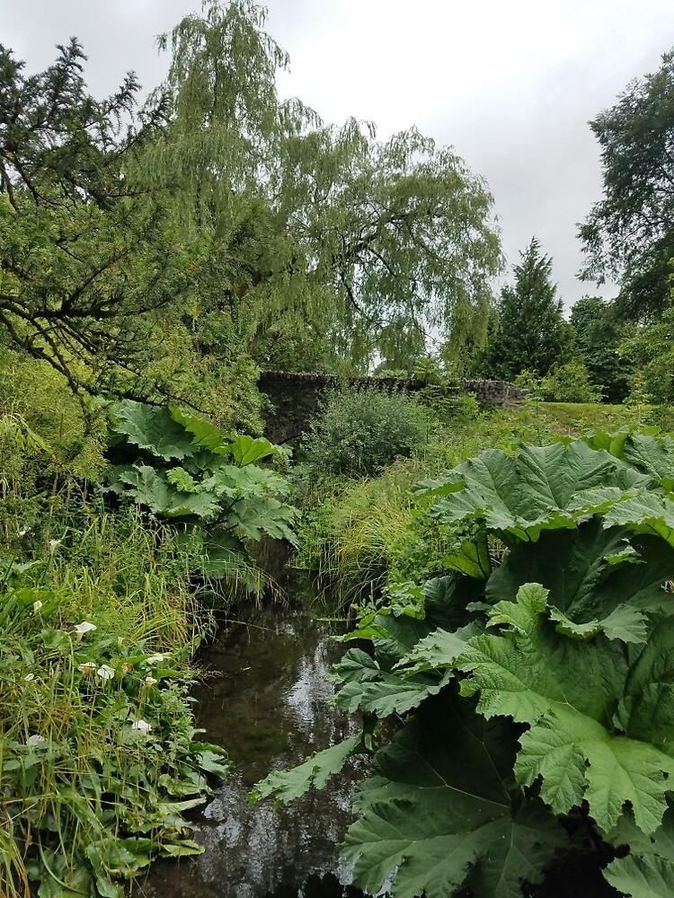 Blarney Castle Gardens by kayberg