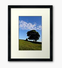 Deciduous Delight Framed Print
