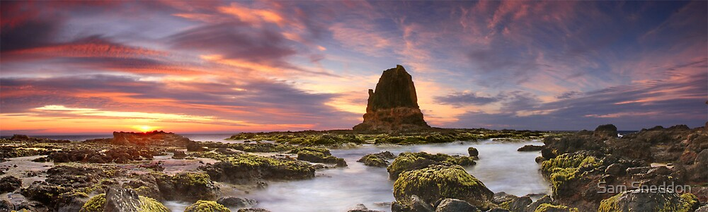 Glorious Cape Schanck by Sam Sneddon