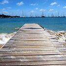 Caribbean Perspective by John Dalkin