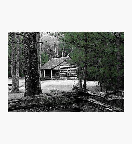 Carter Shields Cabin VIII Photographic Print