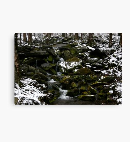 Snowy Appalachian Creek Canvas Print
