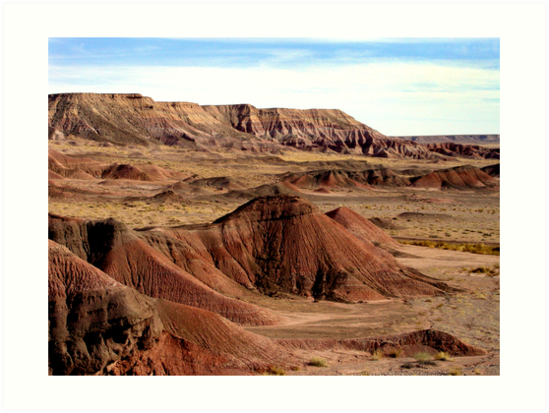 Navajolands by Bill Serniuk