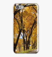 Fall Walk iPhone Case/Skin