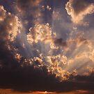 Sundown on the farm by Viv van der Holst