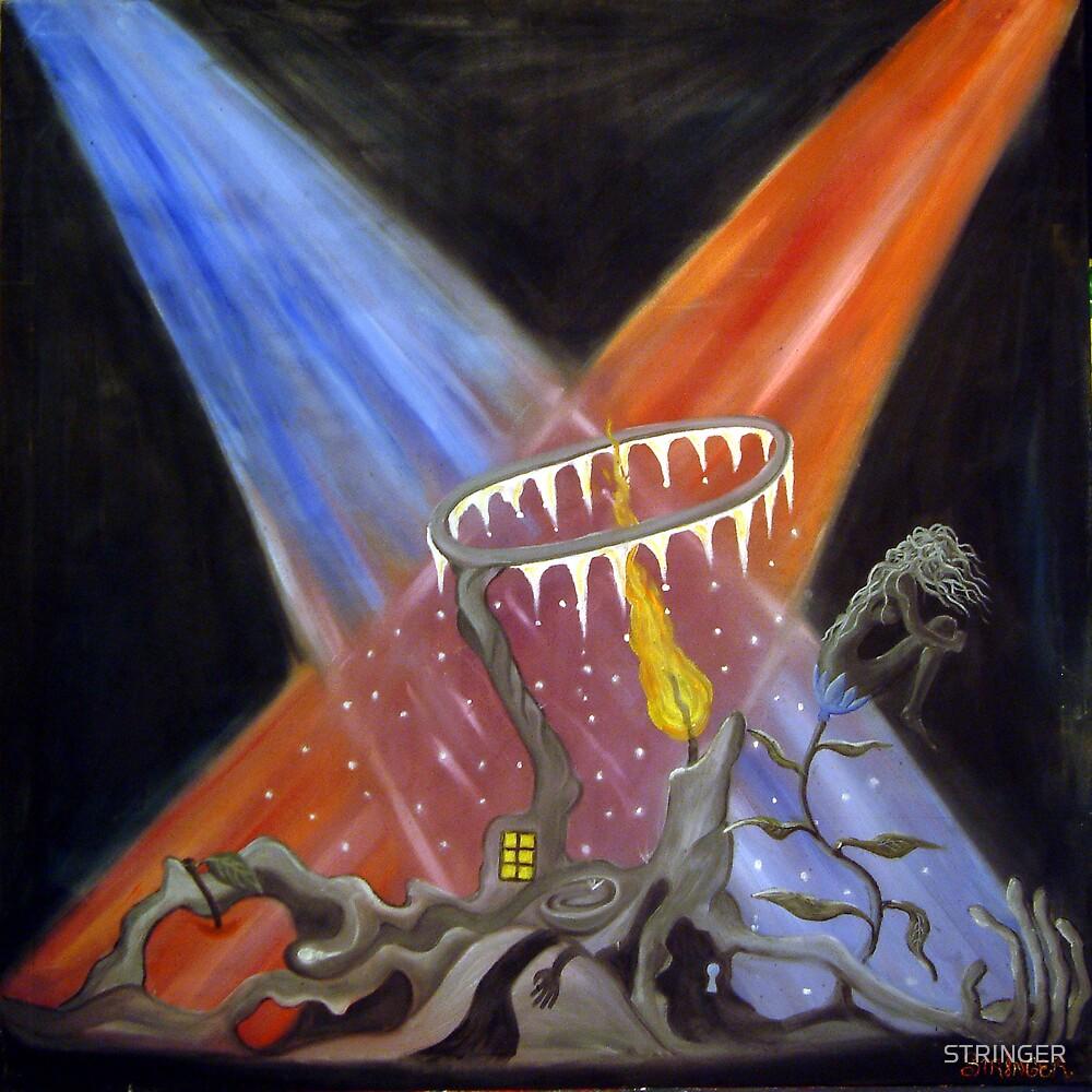 the illumination of perversity. by STRINGER