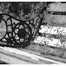 Bench - Black & White by Danita Hickson