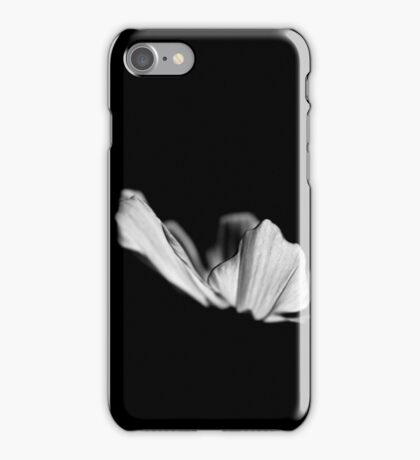 Black & White Floral Photography - Cosmos -  iPhone Case/Skin