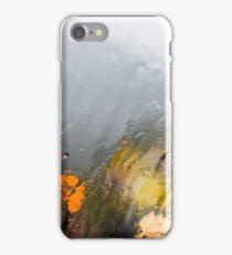 Tasmanian Landscape 3 iPhone Case/Skin