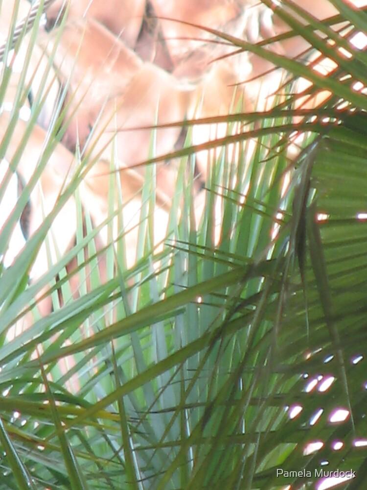 Beautiful Green Palms by Pamela Murdock