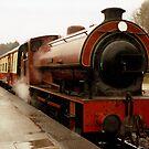 Haiverthwaite Steam Train by georgiegirl