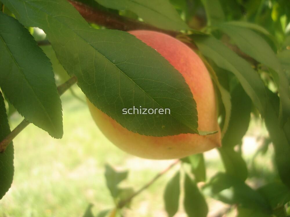 peaches for me by schizoren