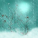 The Delicate Beauty of Winter by CarolM
