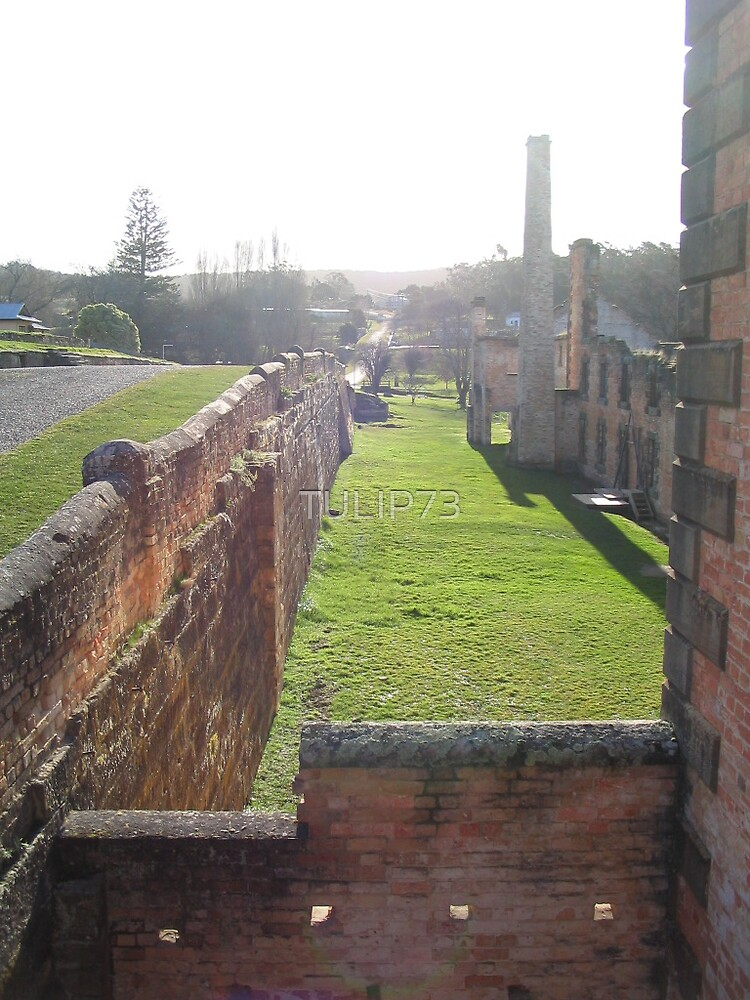 THE WALLS OF PORT ARTHUR by TULIP73