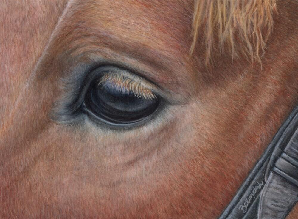 Its in the eye by Belinda Lindhardt