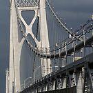 Mid-Hudson Bridge III by Mojha Renee MacDowell