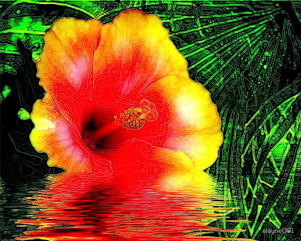 Thirsty Hibiscus by elayne001