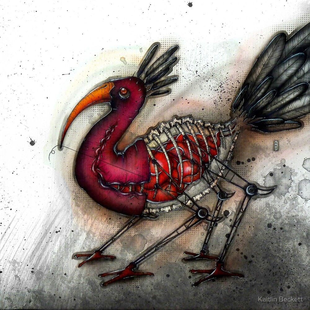 Stitchbird by Kaitlin Beckett