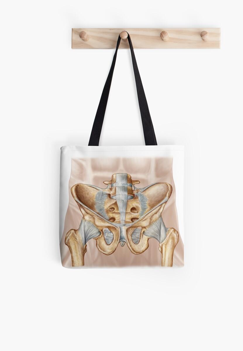 Bolsas de tela «Anatomía del hueso pélvico humano y ligamentos.» de ...