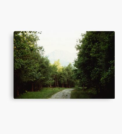 The Path to Rob Roy's Hideout Canvas Print