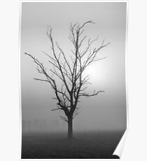 Creeping Mist - Tongala Victoria Australia Poster