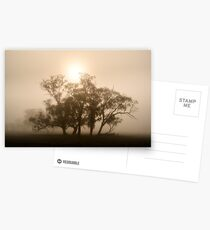 On fire in the fog - Tongala, Victoria, Australia Postcards