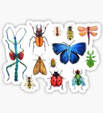 Entomology (white) Sticker
