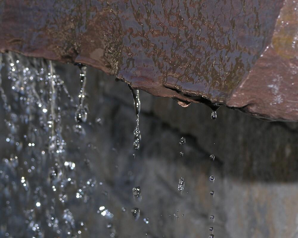 Water drips by Kerri Kenel
