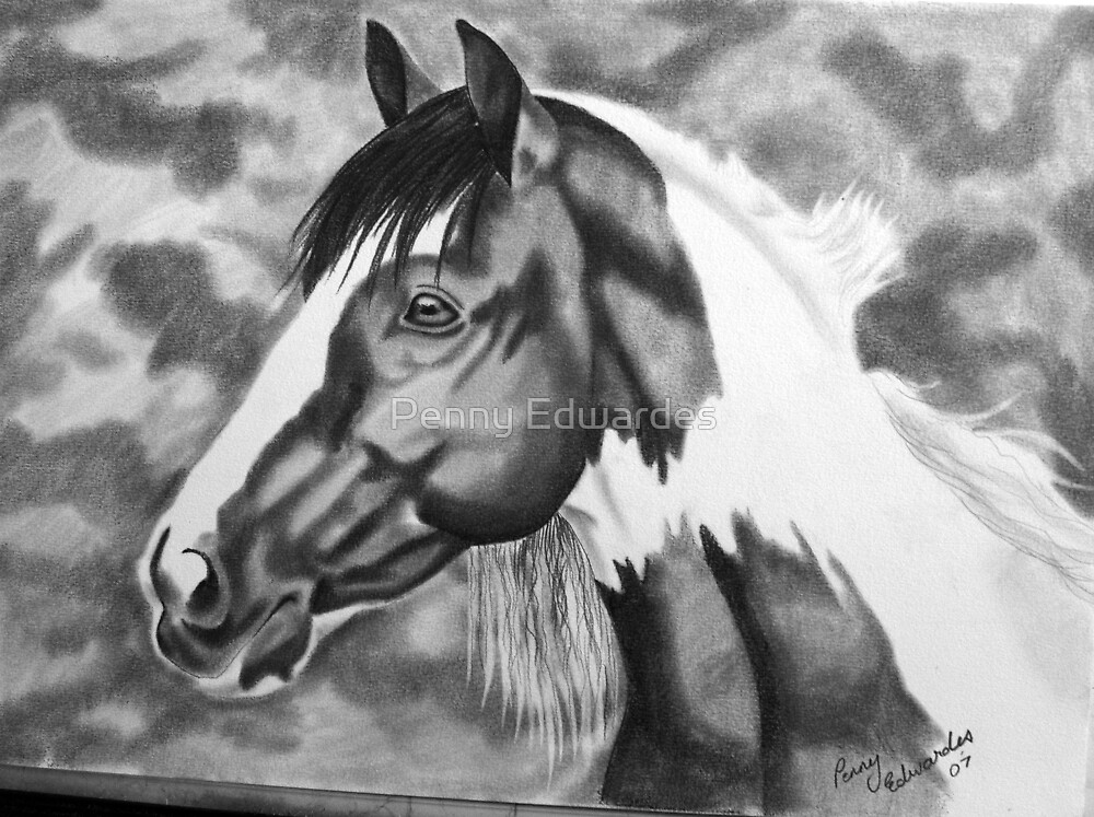 """Kelly Margetts """"Hector"""" by Penny Edwardes"""