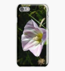 Sea bindweed iPhone Case/Skin